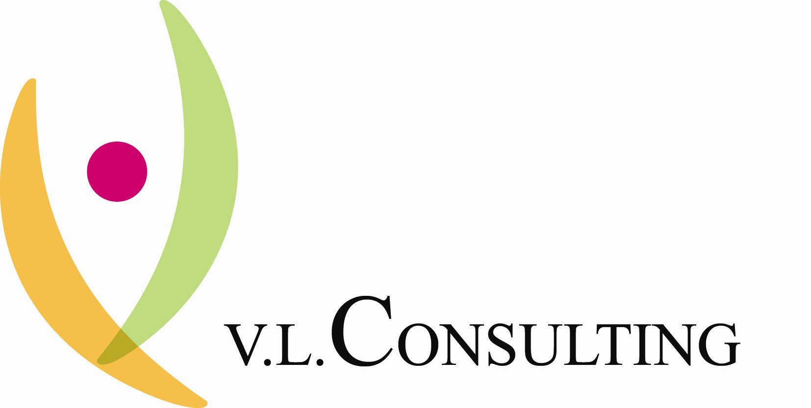 VL CONSULTING