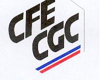 Logo C.F.E.CGC Métallurgie