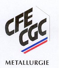 FEDERATION DE LA METALLURGIE CFE-CGC – FCMTM